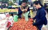 Trông mong gì từ các tham tán thương mại Việt Nam?