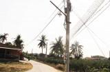 Dương Xuân Hội thắp sáng đường giao thông nông thôn
