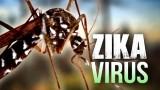 Bộ Y tế chỉ đạo cảnh giác, phát hiện sớm bệnh do virus Zika