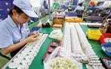 Triển vọng tăng trưởng của nền kinh tế Việt Nam qua lăng kính của ADB