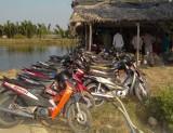Huyện Cần Giuộc: Triệt xóa tụ điểm đánh bạc ở đầm tôm