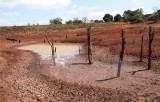 Quốc tế cam kết hỗ trợ Việt Nam 12,3 triệu USD ứng phó với hạn mặn