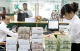 Tăng cường kiểm soát chất lượng tín dụng và xử lý nợ xấu