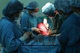 Cần Thơ: Phẫu thuật thành công u xơ tử cung nặng 7,8kg