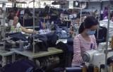 Cần Đước: Đào tạo nghề cho lao động nông thôn