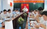 Thống nhất nội dung, chương trình kỳ họp thứ nhất và kỳ họp thứ hai HĐND tỉnh Long An khóa IX