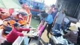 Hỗ trợ 100% lãi suất cho vay thu, mua tạm trữ hải sản