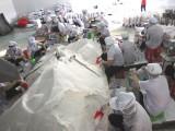 NAFIQAD công bố chất lượng muối ăn ở biển miền Trung sau vụ cá chết