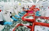 """Xuất khẩu thủy sản Việt Nam: """"Gánh vàng đổ ra biển""""?"""