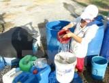 Nhật Bản hỗ trợ 2,5 triệu USD cho người dân Việt Nam vùng hạn hán