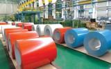 Các doanh nghiệp sản xuất thép mạ mầu đệ đơn kêu cứu