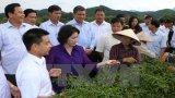 Chủ tịch Quốc hội: Lạng Sơn chú trọng cải thiện môi trường đầu tư