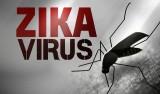Phụ nữ mang thai cần chủ động phòng bệnh do vi-rút Zika