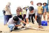 Formosa chính thức nhận lỗi vụ cá chết, hứa bồi thường 11.500 tỷ đồng