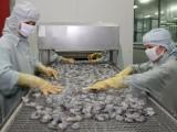 Anh rời EU: Xuất khẩu tôm của Việt Nam có xu hướng giảm