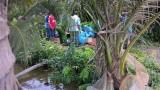Bạc Liêu: Phát hiện xác chết phía sau vườn