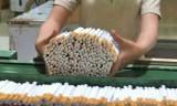 Việc phòng, chống tác hại thuốc lá có làm tăng thất nghiệp?