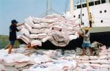 Xuất khẩu gạo Việt Nam gặp khó khăn