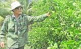 Những tín hiệu vui từ tái cơ cấu ngành nông nghiệp