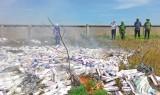 Tân Thạnh: Tiêu hủy hơn 101.000 gói thuốc lá ngoại nhập lậu