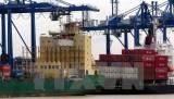Kim ngạch xuất nhập khẩu của Việt Nam diễn biến tích cực