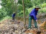 Việt Nam-Campuchia đánh giá hiệu quả hợp tác sản xuất cao su