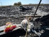 Malaysia và Ukraine cam kết làm sáng tỏ vụ bắn rơi máy bay MH17