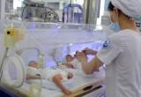 Điều kiện để cơ sở y tế được thực hiện kỹ thuật mang thai hộ