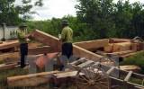 Lâm tặc đang ngang nhiên tàn phá rừng phòng hộ Vĩnh Linh