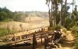Án mạng nghiêm trọng: Cán bộ kiểm lâm bị chém chết giữa rừng