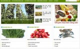 Nông dân sử dụng internet để quảng bá thương hiệu nông sản