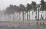 Vùng áp thấp mới đã hình thành trên Biển Đông