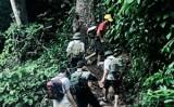 Phó Thủ tướng yêu cầu khẩn trương truy bắt kẻ giết 4 người ở Lào Cai