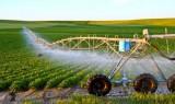 Nông nghiệp ứng dụng công nghệ cao và thích ứng với biến đổi khí hậu