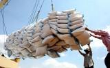 Xuất khẩu gạo giảm mạnh về giá trị