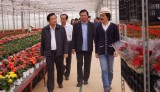 Ứng dụng công nghệ cao trong nông nghiệp ở thành phố Đà Lạt
