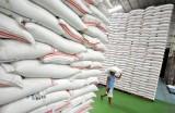 Thái Lan cạnh tranh đấu giá xuất khẩu 250 ngàn tấn gạo vào Philippine với VN