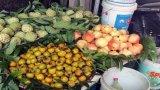 8 loại hoa quả Trung Quốc ùn ùn vào thị trường Việt Nam