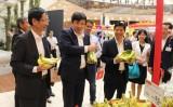 Chuối Việt Nam được bán tại hệ thống siêu thị Aeon toàn Nhật Bản