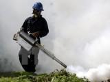 Virus Zika tại Singapore không phải lây truyền từ Nam Mỹ