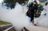 Singapore tăng ca nhiễm virus Zika