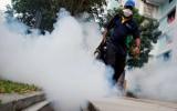 Singapore: Số ca mắc virus Zika tiếp tục tăng lên 242 người