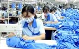Khó khăn dồn dập, doanh nghiệp dệt may đang nỗ lực tự cứu
