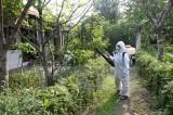 Điều tra, xác minh ổ dịch virus Zika tại tỉnh Trà Vinh