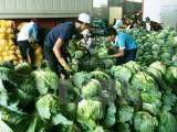 Bộ Nông nghiệp chủ trương lấy chăn nuôi bù đắp cho thâm hụt toàn ngành