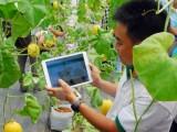 Tôn vinh các sản phẩm nông nghiệp tiêu biểu năm 2015