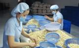Tân An hiện có hơn 1.140 doanh nghiệp vừa và nhỏ đang hoạt động