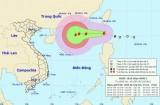 Công điện yêu cầu chủ động đối phó với diễn biến bão Aere