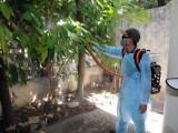 TP.HCM khẩn trương điều tra dịch tễ khu vực bệnh nhân nhiễm Zika