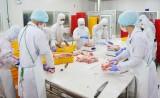 Giá trị sản xuất công nghiệp huyện Cần Giuộc ước đạt trên 7.230 tỉ đồng